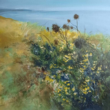 A-Tangle-of-Gorse